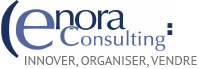 ENORA Consulting